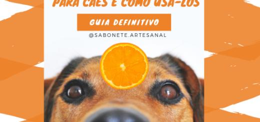 Top 7 óleos essenciais para cães e como usá-los - Guia Definitivo