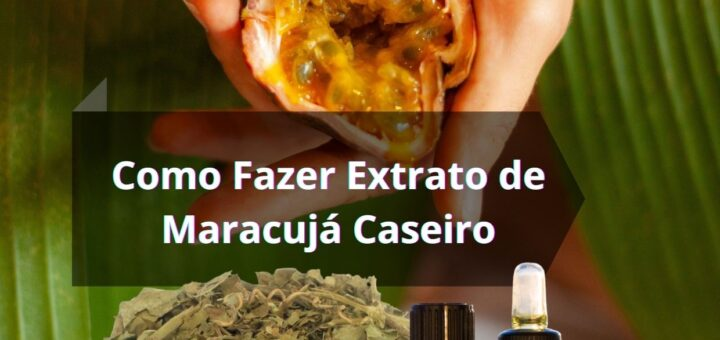 Como Fazer Extrato de Maracujá Caseiro