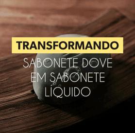 Transformando Sabonete Dove em Sabonete Liquido - Confira
